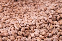 Background of beans Royalty Free Stock Photo
