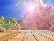 Background of flowers and empty surface of a wooden table. royalty free stock image
