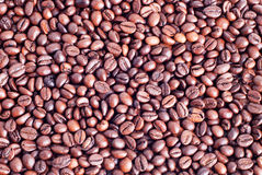 Background beautiful brown well roasted coffee beans Royalty Free Stock Photography