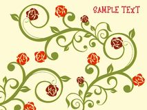 Background with beautiful floral Stock Photography