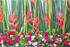 Background of Beautiful flower wedding decorate Stock Photography