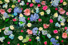 Background of Beautiful flower for wedding decoration Stock Images