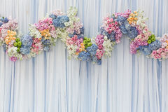 Background of Beautiful flower for wedding decoration Stock Photography