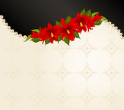 Background with beautiful orchids Stock Images