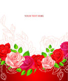 Background with beauty roses Stock Image