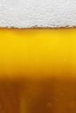 Background of beer in the glass Stock Image