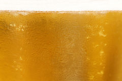 Background of beer in the glass Royalty Free Stock Images