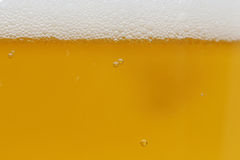Background of beer in the glass Royalty Free Stock Image