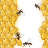 Background with bees Royalty Free Stock Image