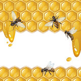Background with bees and honeycomb Stock Photos