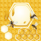 Background with bees and honeycomb Stock Image