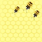 Background with bees and honeycomb. Seamless background with bees and honeycomb Stock Photography