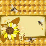 Background with bees and sunflowers Stock Photo