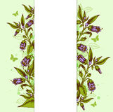 Background with bellflower and leaves Royalty Free Stock Photography