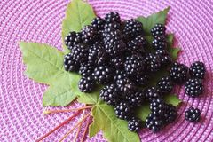 Background with berries - blackberries unripe. Rubus fruticosus stock photo