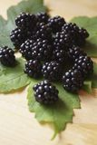 Background with berries - blackberries unripe. Rubus fruticosus royalty free stock photos
