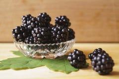 Background with berries - blackberries unripe. Rubus fruticosus royalty free stock photos