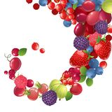 Background with berries stock illustration