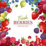 Background with berries Stock Photos