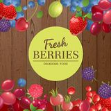 Background with berries Stock Photo