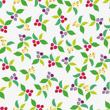 Background, berry, grey Stock Images