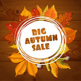 Background of a big autumn sale with leaves on wo Stock Photos