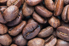 Background of big roasted coffee beans Stock Image