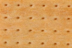 Background of biscuit. Pin hole. Macro. Stock Photos