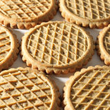 Background of biscuits Stock Image