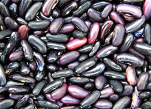 Background of black bean beans Stock Images