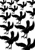 Background black crows. White background with black crows Royalty Free Illustration