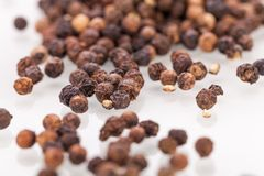 Background of black peppercorns Stock Image
