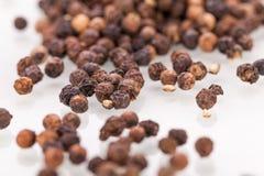 Background of black peppercorns Stock Image