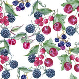 Background of blackberries, cherries and currants. Seamless pattern. Watercolor illustration Royalty Free Stock Photo