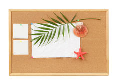 Background with blank crumpled paper, seashells, palm leave and seashell royalty free stock photos