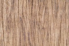 Background of bleached dirty oak. Wooden background created from old textured wood stock photo