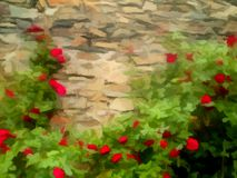 Background of blooming red roses on stonewall. Digital painting Stock Photo