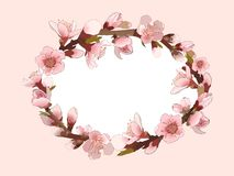 Background With Blossoming Pink Flowers. Stock Images