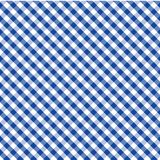 background blue cross gingham seamless weave 库存照片
