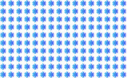 Background blue flowers. Many blue flowers on a white background Royalty Free Stock Images