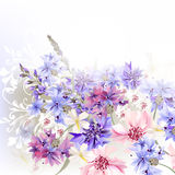 Background  blue, pink and purple cornflowers. Floral clear background  blue, pink and purple cornflowers Royalty Free Stock Images