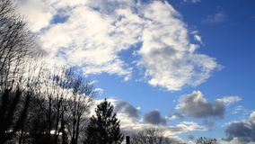 Background blue sky with clouds, time lapse, tree, winter. Background blue sky with clouds and tree stock footage