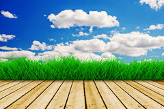 Background with blue sky and green grass Royalty Free Stock Images
