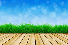 Background with blue sky and green grass Stock Photo