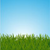 Background with a blue sky and green grass Stock Photography