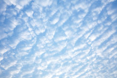 Background from blue sky. In summer Royalty Free Stock Image