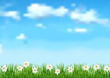 Background with blue sky,  white clouds end white flowers on gree Royalty Free Stock Photos