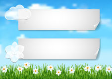 Background with blue sky,  white clouds end white flowers on gree Royalty Free Stock Photo