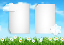 Background with blue sky,  white clouds end white flowers on gree Royalty Free Stock Images