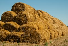 The background of the blue sky and yellow straw, the summer landscape,harvesting will ideally suit the background of the inscripti stock image